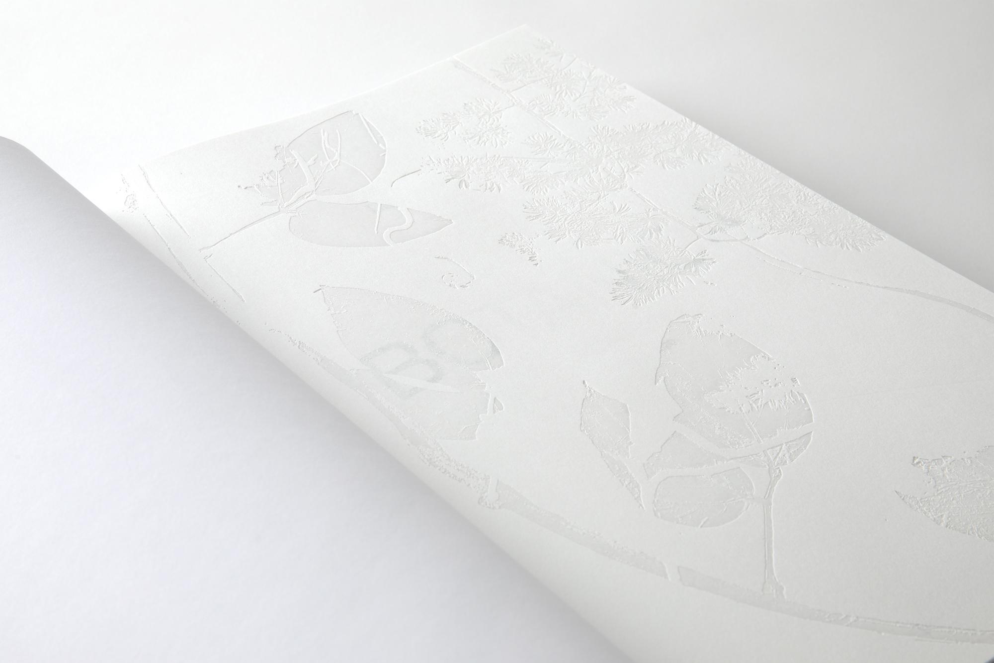 Lacasta Design