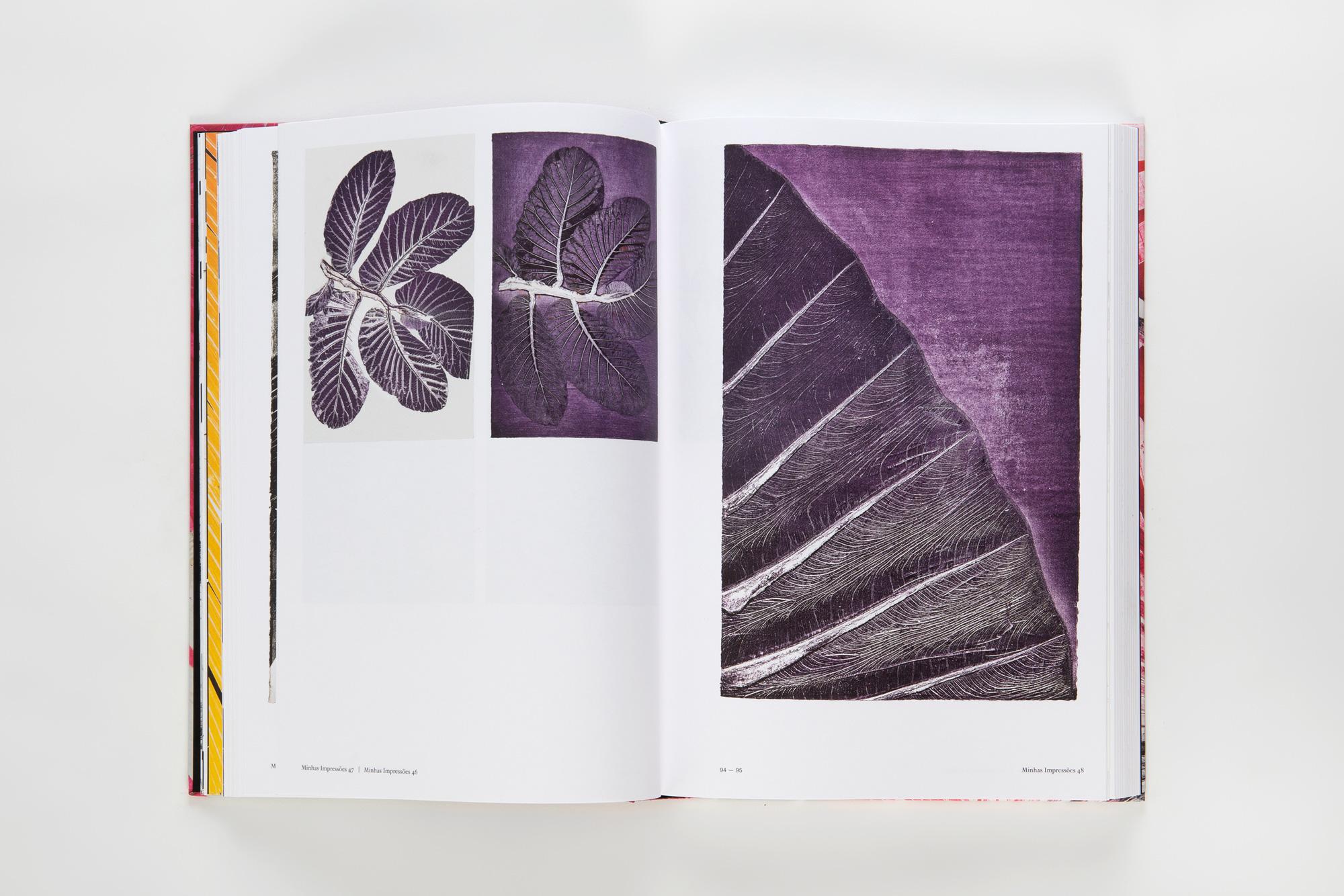 Lacasta Design Luiz Zerbini